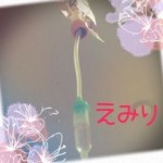 qChvuOYHyo_s.jpg